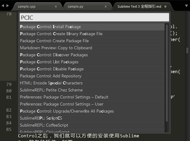Package Control 安装成功